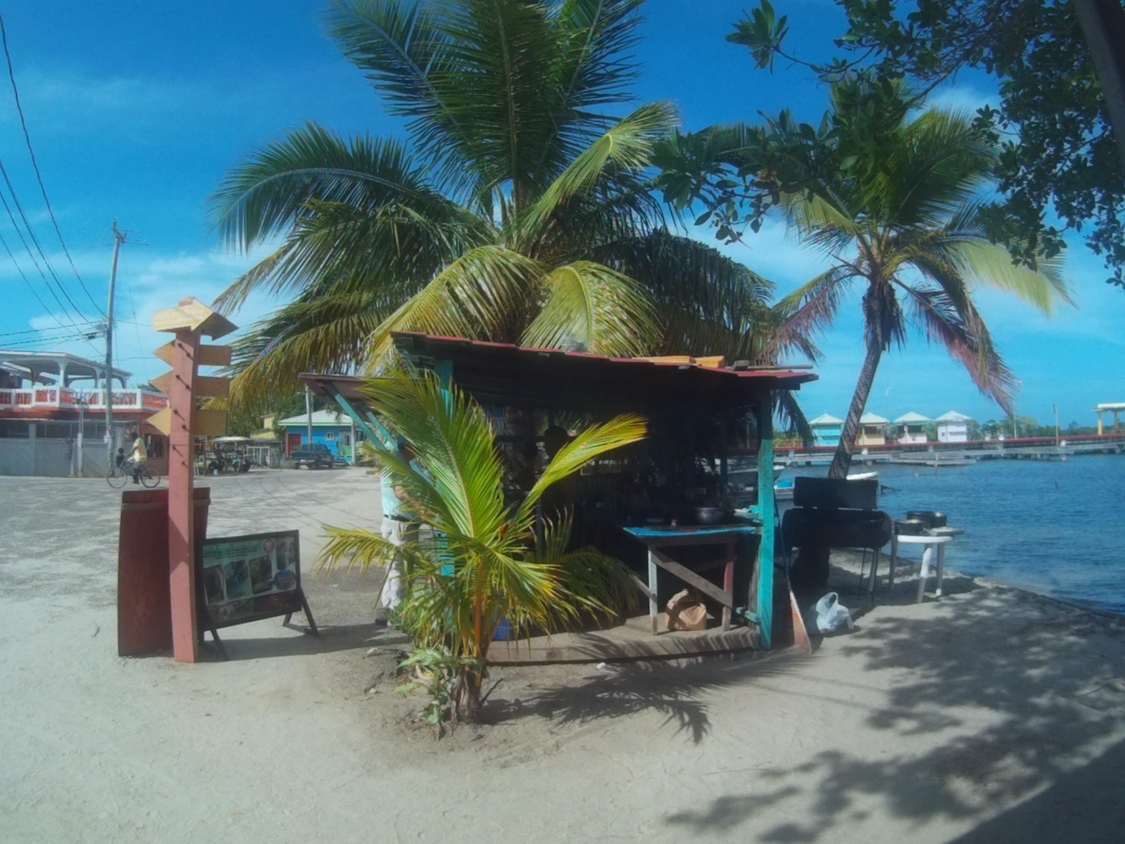 fish shack Placencia