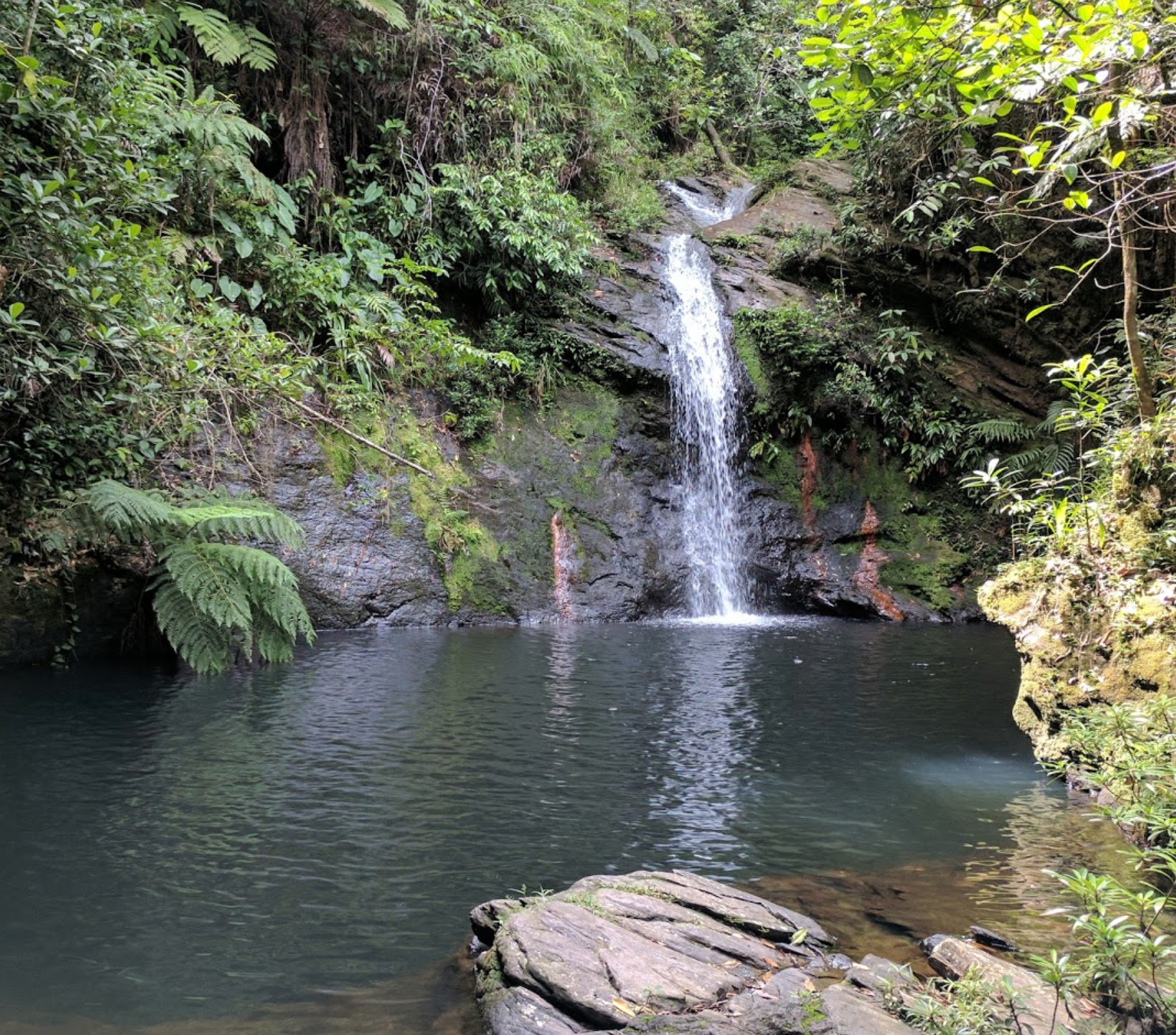 Cockscomb Basin Forest Reserve Waterfall
