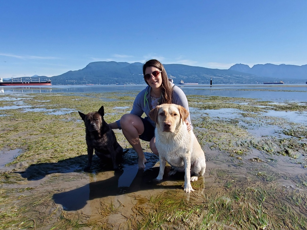 at the beach with my two dogs Ella and Zora