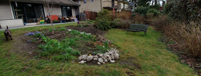 My yard before I landscaped looking very rough and in need of some TLC